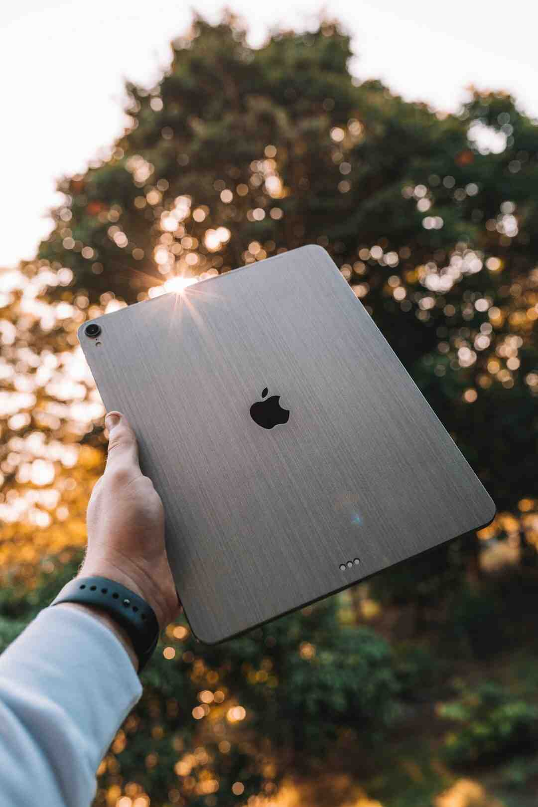 How do you get into a locked iPad?