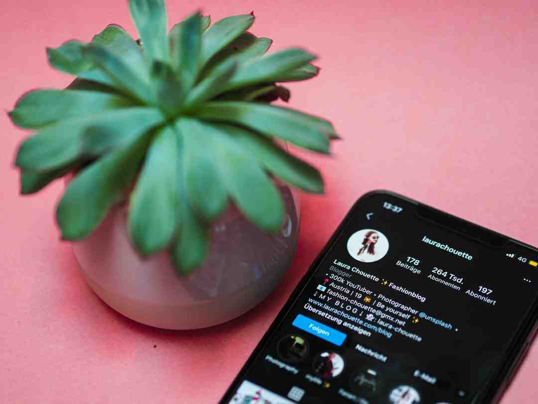 Does Instagram on safari show followers in order?
