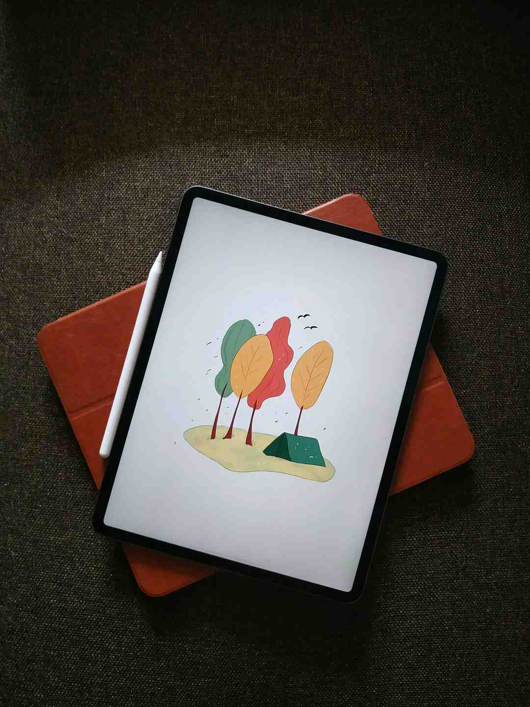How to use the ipad pro