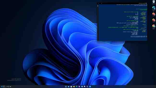 What is the latest Windows build?
